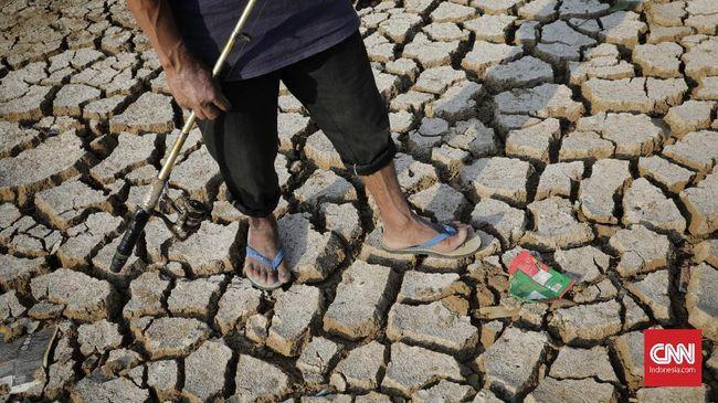 BPBD Kabupaten Banyumas, Jawa Tengah menyatakan kemarau telah mengakibatkan 16 desa di kabupaten tersebut krisis air bersih.