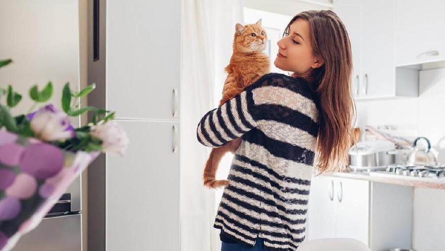 Benarkah Pelihara Kucing Bisa Sebabkan Kemandulan?