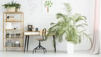 Buat Bunda yang senang dengan tanaman, bisa ditiru nih tata letak perabot dan tanaman untuk workspace di rumah. (Foto: iStock)