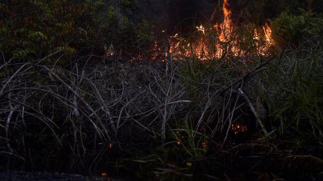 BMKG Pekanbaru mendeteksi 138 titik panas yang mengindikasikan kebakaran hutan dan lahan tersebar di delapan kabupaten di Provinsi Riau.
