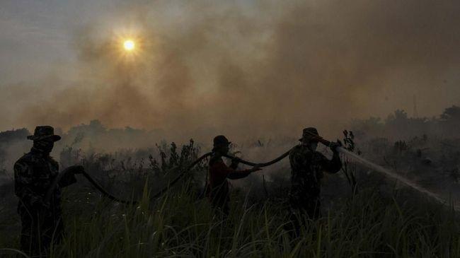 Pemprov Riau Cabut Status Darurat Pencemaran Udara Karhutla