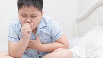 Cara Meredakan Batuk Kering pada Anak