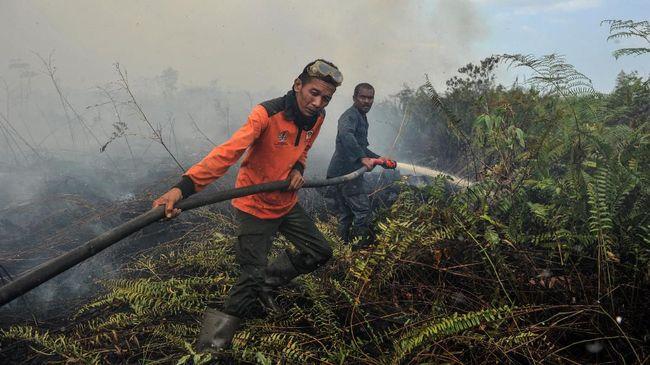Badan Penanggulangan Bencana Aceh (BPBA) Teuku Ahmad Dadek mengatakan 99 persen kebakaran hutan dan lahan dari 185 hektare di Kabupaten Aceh Barat sudah padam.