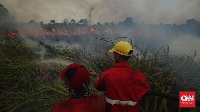 Kebakaran hutan dan lahan (karhutla) di Kecamatan Pedamaran, Kabupaten Ogan Komering Ilir Sumsel masih membara sejak diketahui terbakar Selasa (21/9) siang.