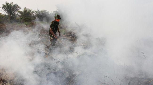 Kepolisian menetapkan 87 tersangka dalam kasus kebakaran hutan dan lahan atau karhutla. Dari 87 tersangka itu, satu tersangka merupakan korporasi.