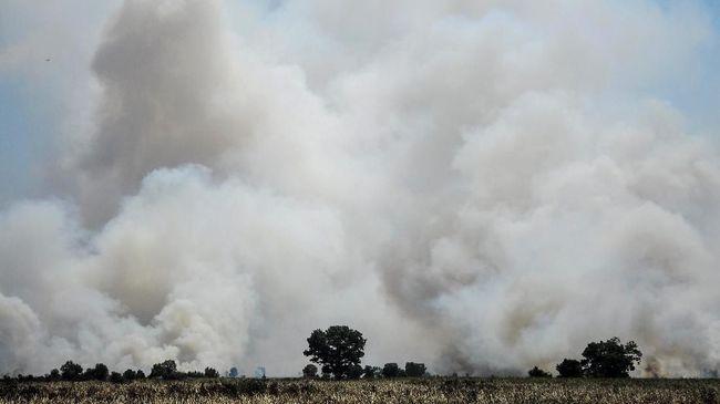 Polres Kabupaten Musi Rawas menyatakan Sirtani (54), seorang PNS dan pemilik lahan, memerintahkan Arman untuk membakar lahan miliknya.