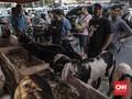 Protokol Iduladha, Jabar Batasi Jam Operasional Pasar Hewan