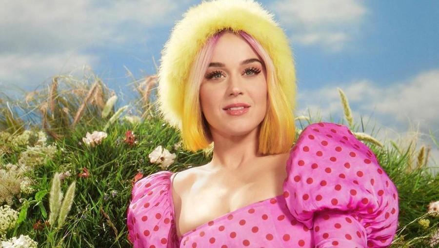Katy Perry Dituduh Lakukan Pelecehan Seksual