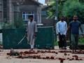 Sikap Indonesia Soal Kashmir Sampai Status Zakir Naik