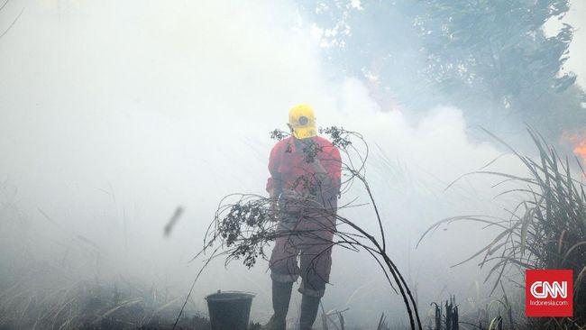 Asap kebakaran hutan dan lahan (karhutla) yang terjadi di Pekanbaru berpengaruh pada jarak pandang menjadi 1,5 kilometer.