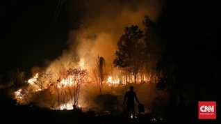 Lahan 53 Hektare di Sumsel Terbakar, 3 Hari Api Masih Membara