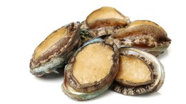 4 Alasan Kerang Abalon Dikenal dengan Harga 'Selangit'