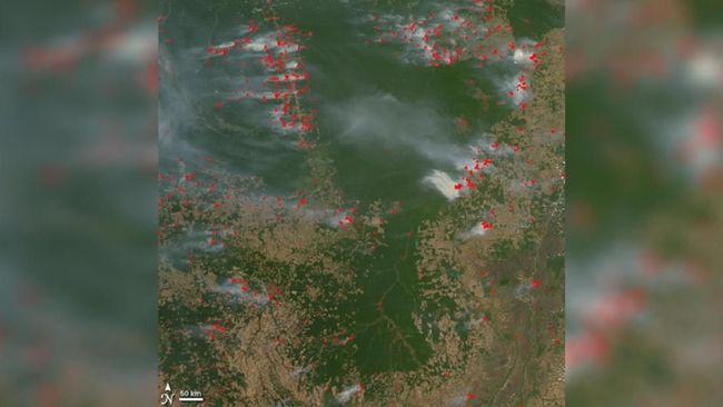 NASA Rekam Penampakan Kebakaran Hutan Amazon