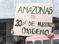 VIDEO: Dunia Kecam Kebakaran Hutan Amazon