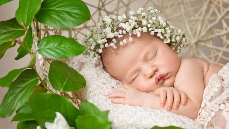 Little newborn girl 11 days, sleeps. Beautiful newborn girl and flowers