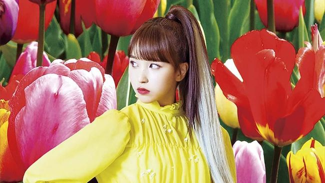 JYP Entertainment memberikan kondisi terkini Mina TWICE usai kembali dari Jepang dalam rangka beristirahat setelah alami gangguan kecemasan.