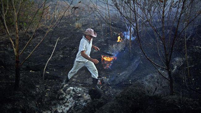 Kebakaran hutan dan lahan di Bolivia membuat pemadam setempat kewalahan karena keterbatasan jumlah serta peralatan pemadam.