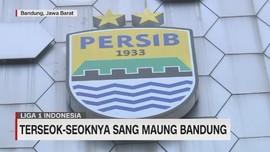 VIDEO: Terseok-seoknya Sang Maung Bandung