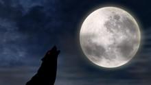 NASA Siapkan Pemakaman Manusia di Bulan Seharga Rp176 Juta