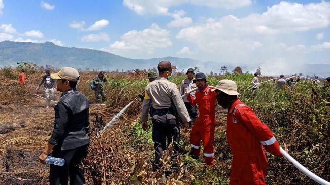BPBD Kabupaten Kolaka Timur menyebut 150 hektare (ha) lahan di tiga desa dan dua kecamatan terbakar pada Minggu (1/8).
