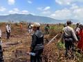 150 Hektare Lahan di Kolaka Timur Terbakar
