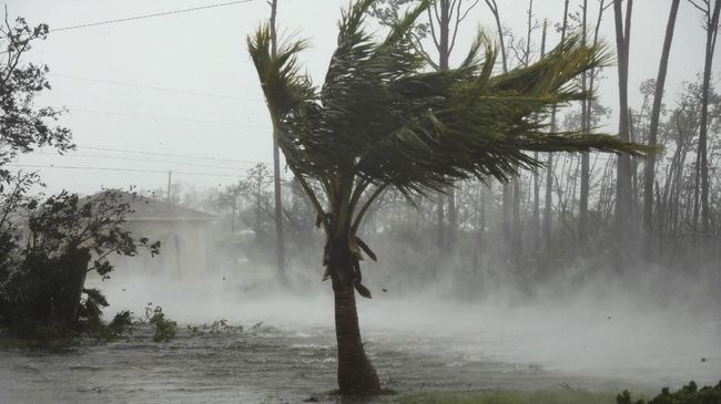 KBRI Filipina menyebut hingga saat ini belum ada laporan yang menyebut warga atau kontingen Indonesia yang terimbas badai Kammuri.