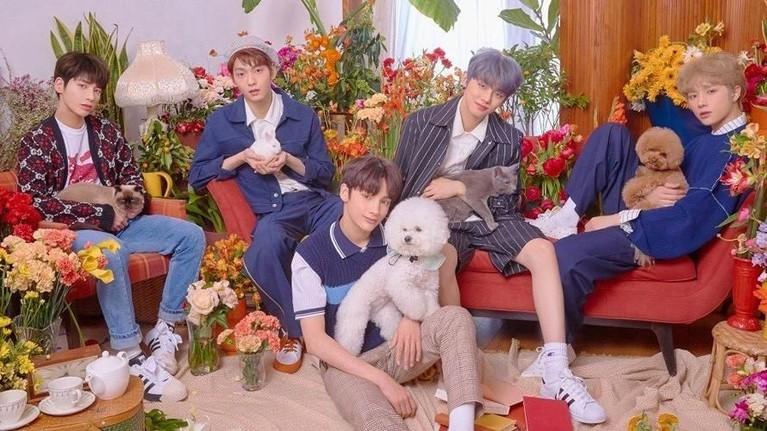Lightstick milik TXT diluncurkan sebelum satu tahun mereka debut. TXT sendiri memulai debutnya pada 4 Maret dengan mini albumnya yang berjudul The Dream Chapter: Star.
