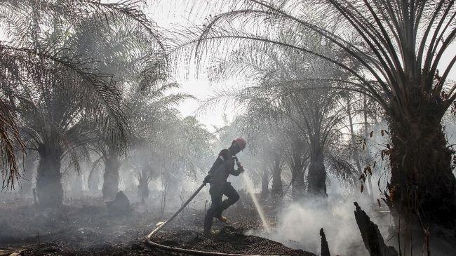 Materi Webinar Daring : Karhutla 2020 di Perkebunan Kelapa Sawit : Potensi dan Upaya Pencegahan