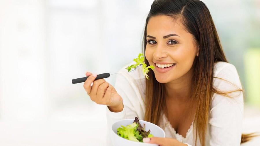 Pilihan Menu Makanan untuk Pegiat Diet Mayo