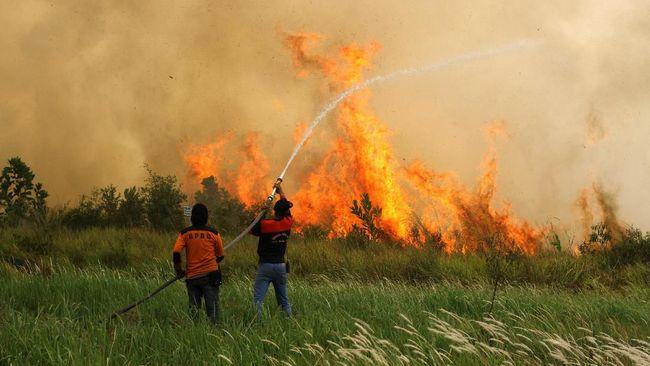 Petugas Badan Penanggulangan Bencana Daerah (BPBD) Kalsel bersama Masyarakat Peduli Api (MPA) berupaya memadamkan api yang membakar lahan gambut di Jalan Tegal Arum kawasan Syamsudin Noor, Banjarbaru, Kalimantan Selatan, Jumat (13/9/2019). Panasnya cuaca dan kencangnya angin membuat kebakaran cepat meluas sehingga menyulitkan petugas untuk memadamkan kebakaran lahan gambut tersebut. ANTARA FOTO/Bayu Pratama S/foc.
