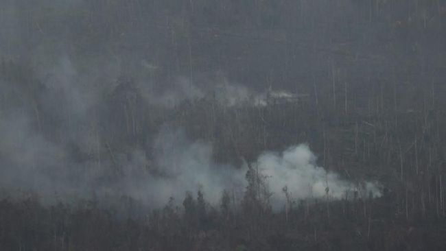 Pengusaha hotel dan restoran di Pekanbaru menyatakan bahwa bencana kabut asap kebakaran hutan yang melanda wilayah mereka menurunkan tingkat hunian 20 persen.