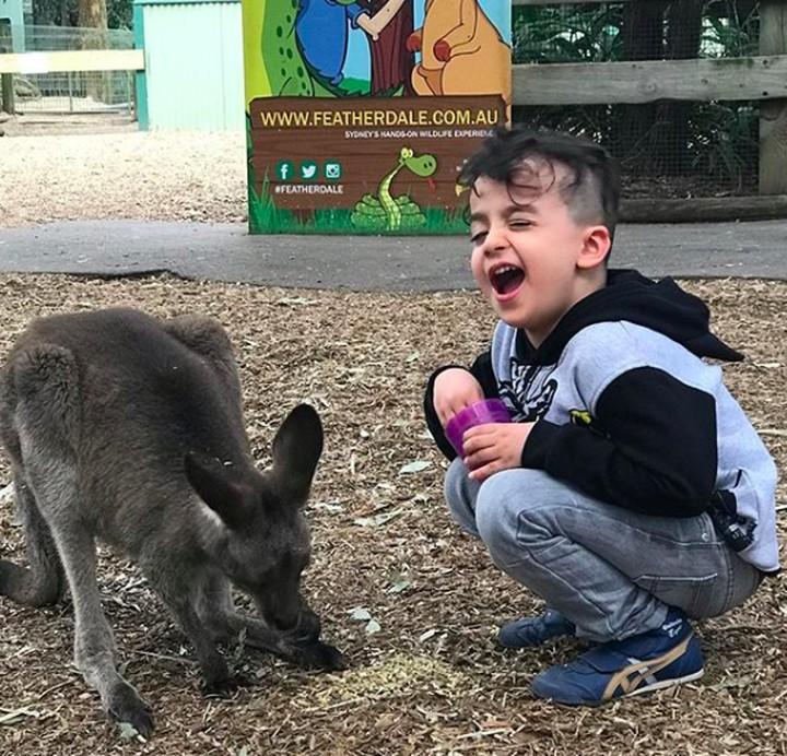 <p><em>Happy</em> banget nih Fahri ketemu binatang favoritnya, Kanguru. (Foto: Instagram/ @ferdyhasan)</p>