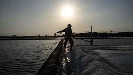 Penyebab RI Impor Garam Meski Punya Garis Pantai Terpanjang