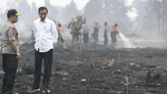 Presiden Jokowi Widodo meninjau langsung lokasi kebakaran hutan dan lahan di Riau. Jokowi juga menyempatkan diri salat minta hujan.