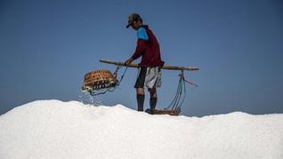 Menperin: Impor Garam Sebenarnya Keterpaksaan