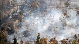 9,5 Hektare Lahan Terbakar di Aceh, 8 Hektare di Riau