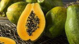 5 Manfaat Konsumsi Pepaya Muda, Antioksidan Hingga Detoks
