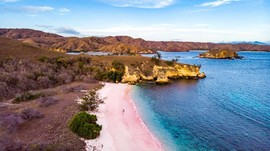 Gambaran Nyata Kehidupan Pulau Komodo dalam The Law of Jungle