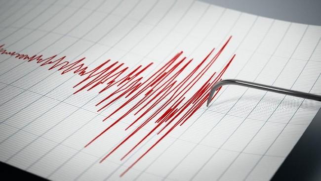 Gempa Magnitudo 4,1 Guncang Seluma Bengkulu