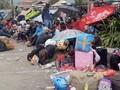 Jokowi Minta Warga Tak Mengungsi dari Wamena