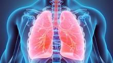 Arti Asfiksia, Kondisi saat Tubuh Kekurangan Oksigen