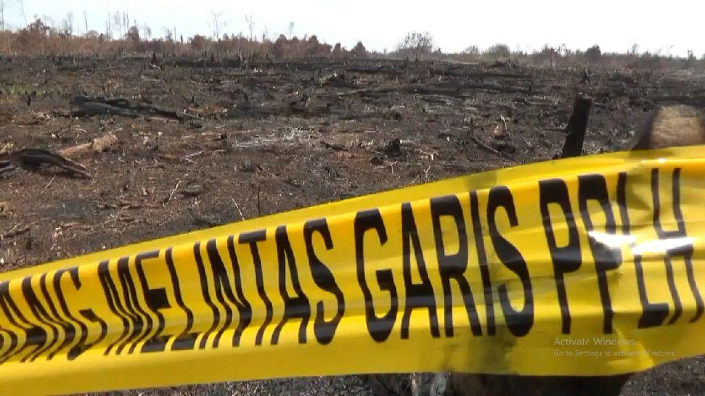 Polda Riau Tingkatkan Kasus Karhutla Teso Indah ke Penyidikan