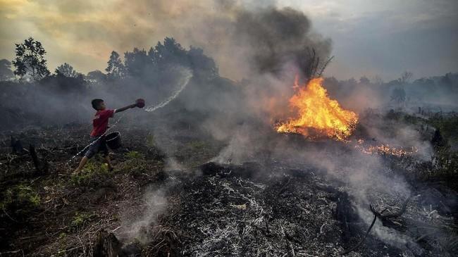 BNPB menyatakan jumlah hotspot karhutla tercatat meningkat di Riau, jadi 34 titik panas pada pagi 7 Oktober 2019.