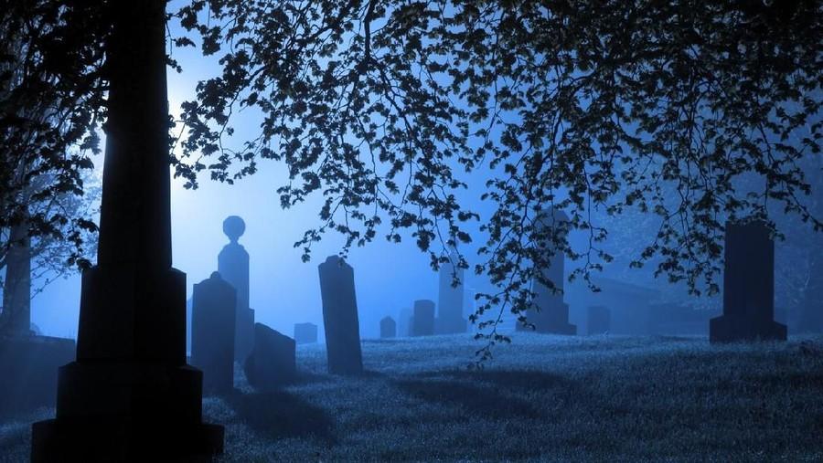 Pria 'Bangkit' dari Kubur Usai Dimakamkan, Kok Bisa Ya Bunda?