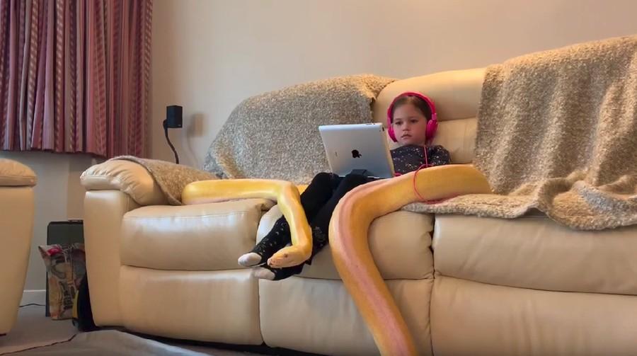 Ngeri! Anak 7 Tahun Ini Pelihara Ular Piton Berukuran Raksasa