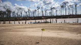 Emisi Turun Saat Corona, Tak Pengaruhi Perubahan Iklim