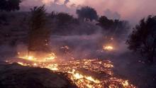 Kebakaran Hutan di California, 50 Ribu Orang Dievakuasi
