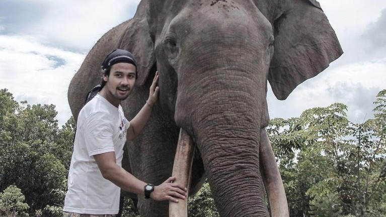 Chicco Jerikho terlihat foto dengan seekor gajah di penagkaran gajah Sumatera.