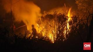 Selama Pandemi Corona Tetap Ada Karhutla di Indonesia