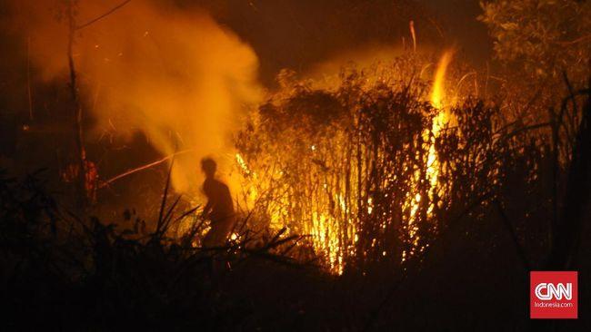 Kebakaran hutan dan lahan (karhutla) makin mendekati rumah warga di Palembang. Jaraknya sekitar 3 meter. Warga tak nyenyak tidur, khawatir api menyambar rumah.